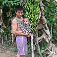 バナナの木と親子